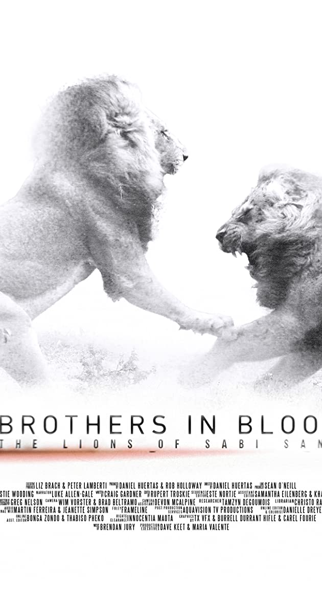 Brothers in Blood: The Lions of Sabi Sand (2015) - IMDb