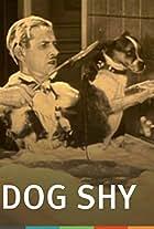 Dog Shy