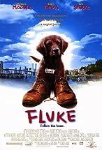 Primary image for Fluke