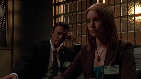 La ley y el orden: Intento Criminal 7×04 – Ciudad Solitaria