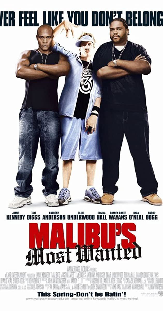 Malibus most wanted 2003 imdb