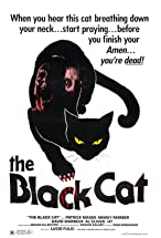 Primary image for The Black Cat