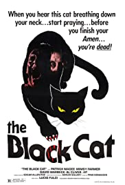 The Black Cat(1981) Poster - Movie Forum, Cast, Reviews