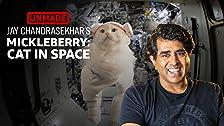 'Mickleberry: Gato en el espacio' de Jay Chandrasekhar