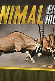 Animal Fight Night (TV Series 2013– ) - IMDb
