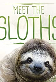 Meet the Sloths Poster