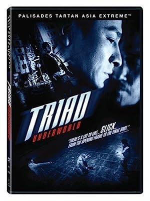 Andy Lau Triad Underworld Movie