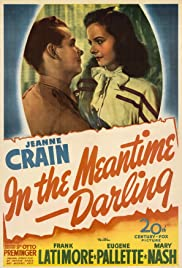 In the Meantime, Darling Poster