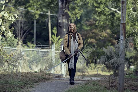 The Walking Dead 9×14 – Cicatrices