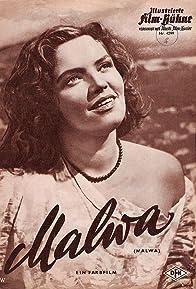 Primary photo for Malva