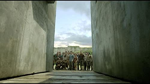 """Thomas is deposited in a community of boys after his memory is erased, soon learning they're all trapped in a maze that will require him to join forces with fellow """"runners"""" for a shot at escape."""