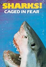 Caged in Fear
