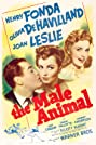 The Male Animal (1942) Poster