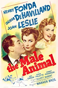 Website for free watching full movies The Male Animal USA [1080i]
