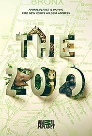The Zoo (2017)