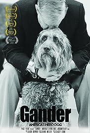 Gander: America's Hero Dog