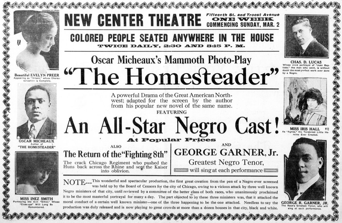 The Homesteader (1919)
