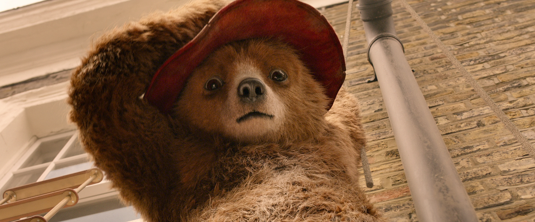Image result for Paddington 2 movie stills