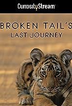 Broken Tail