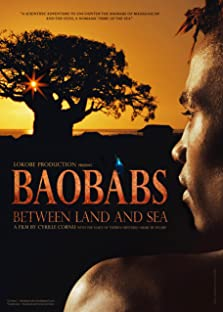 Baobabs between Land and Sea (2015)