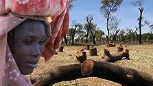 Darfur's Skeleton (2009)