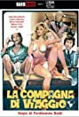 The Traveling Companion (1980) Poster