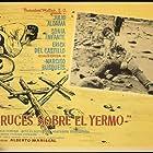 Cruces sobre el yermo (1967)