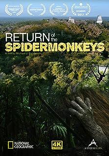 Return of the Spider Monkeys (2016)