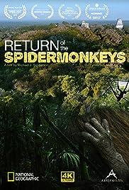 Return of the Spider Monkeys Poster