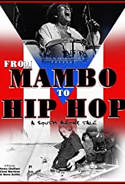 From Mambo to Hip Hop: A South Bronx Tale Poster
