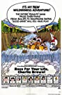 Race for Your Life, Charlie Brown (1977) Poster