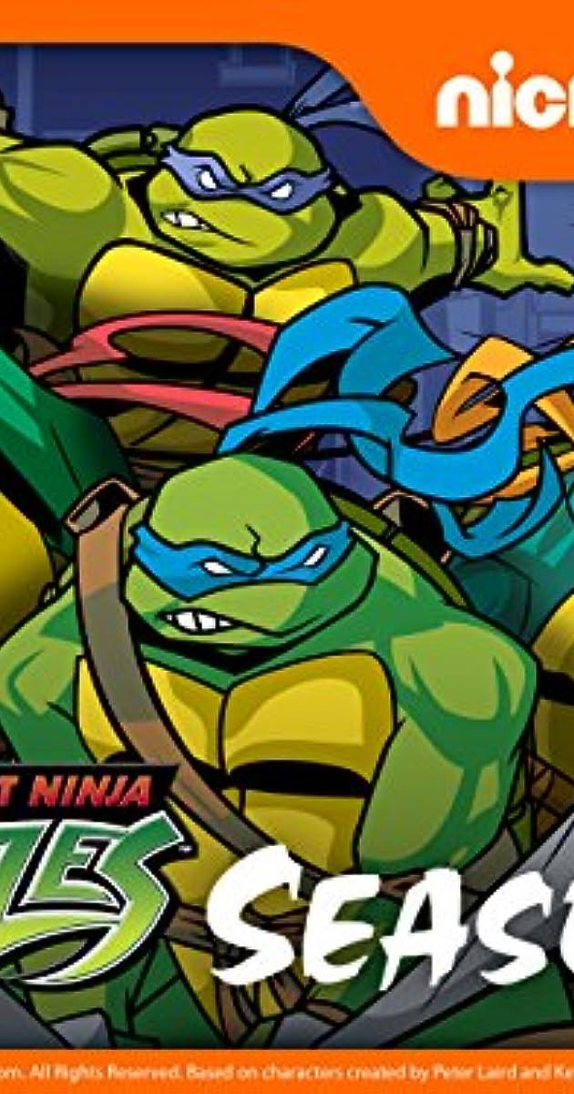 ninja turtles 2003 download