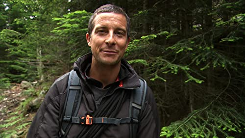 Running Wild With Bear Grylls: Bear Grylls