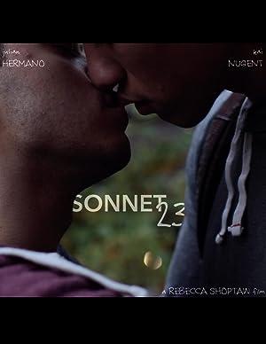 Sonnet 23 (2016) 7