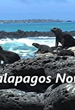 Galapagos Now!