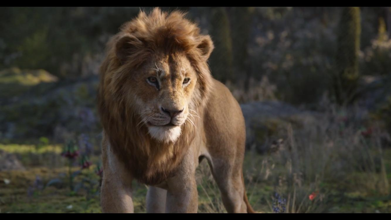 Donald Glover in The Lion King (2019)