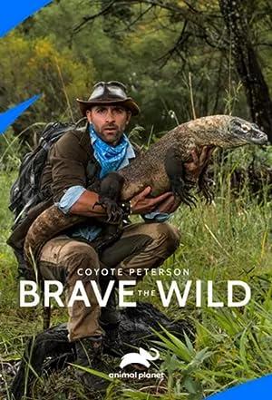 دانلود زیرنویس فارسی سریال Coyote Peterson: Brave the Wild 2020 فصل 1 قسمت 18 هماهنگ با نسخه 1080p