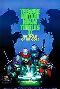 Primary photo for Teenage Mutant Ninja Turtles II: The Secret of the Ooze