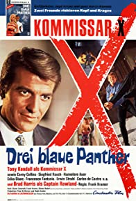 Primary photo for Kommissar X - Drei blaue Panther