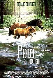 Pom, le poulain Poster