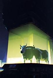 The Animal Agenda Poster