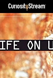 Life on Us: A Microscopic Safari (2014) 1080p