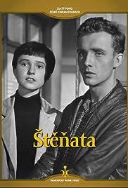 Stenata Poster
