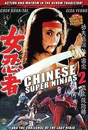 Never Kiss a Ninja Poster