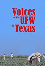 Voices of the UFW in Texas