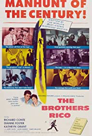 The Brothers Rico Poster - Movie Forum, Cast, Reviews