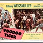 William Bryant, Jean Dean, Michael Fox, and Johnny Weissmuller in Voodoo Tiger (1952)