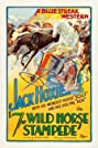 The Wild Horse Stampede (1926) Poster