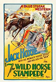The Wild Horse Stampede Poster