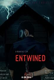 Entwined - The possibilities are endless Poster